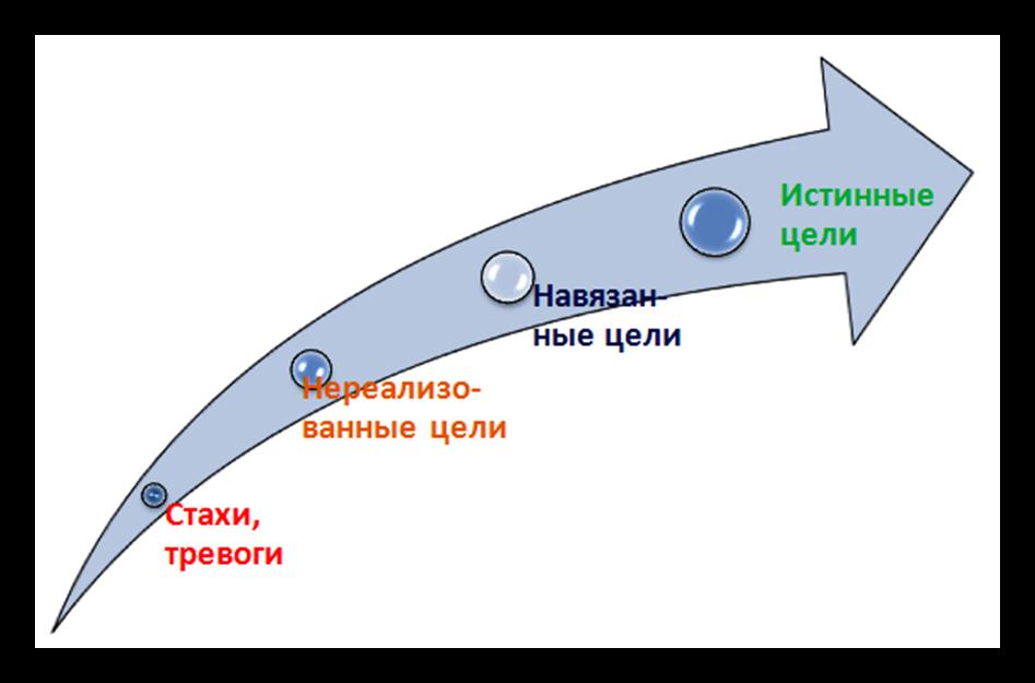 стратегия жизни